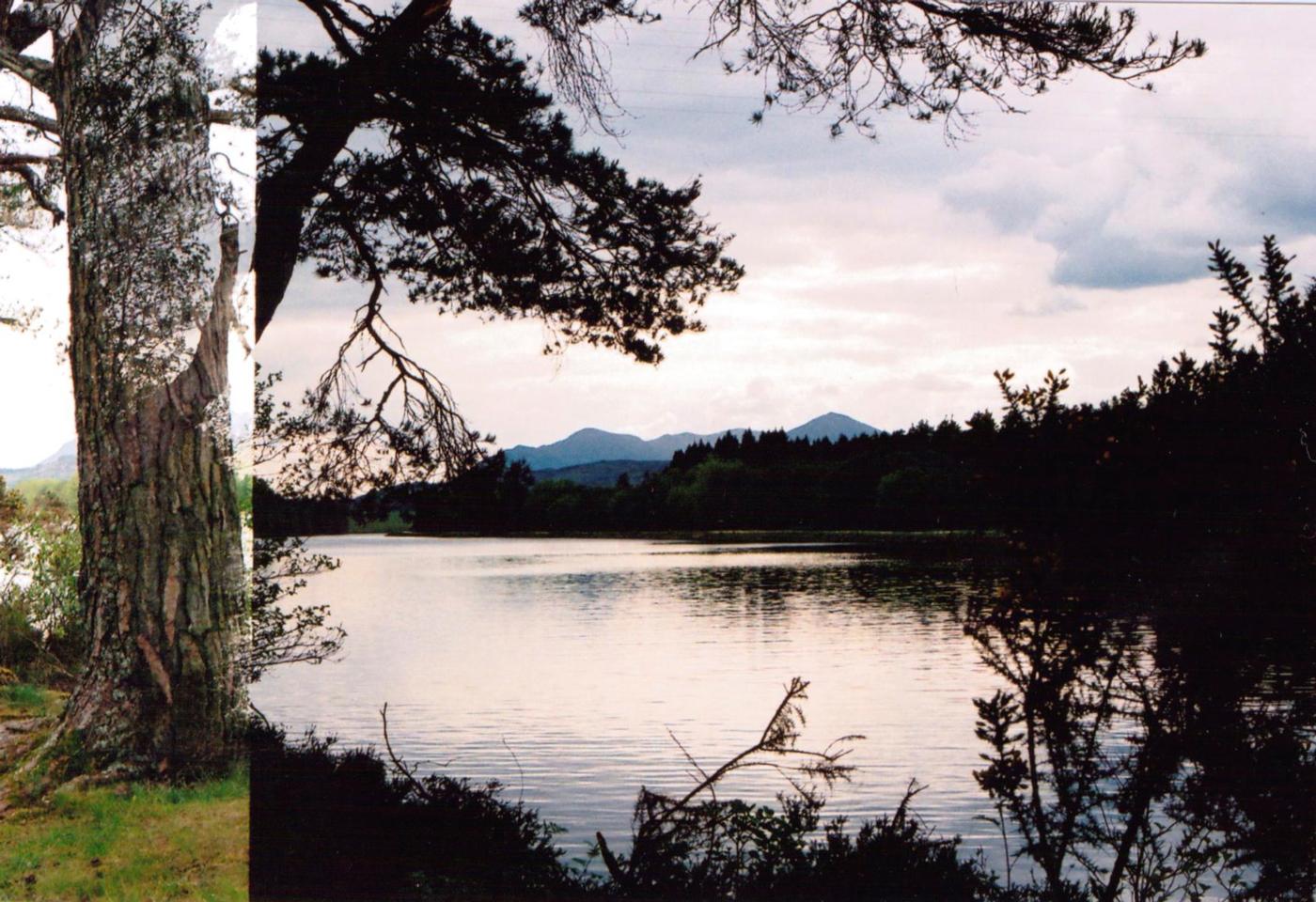 scottish highlands 35mm